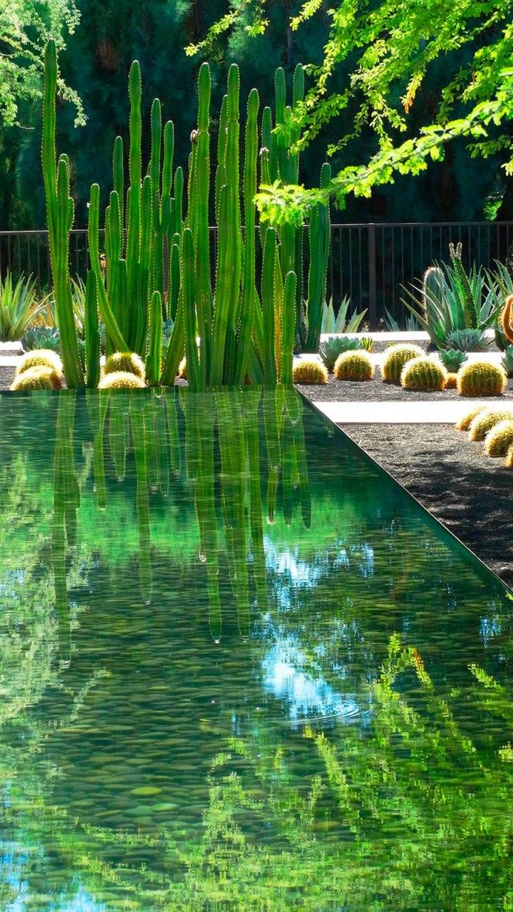 Estanques: el agua como elementodecorativo